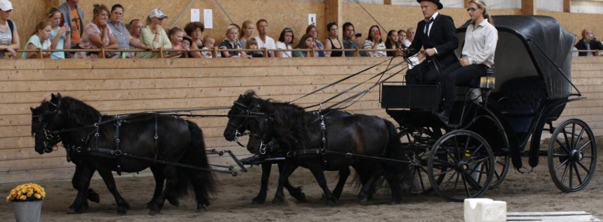 Ponnyexpressen. Foto: Linda Andersson